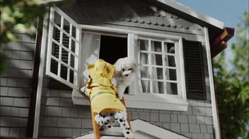 CarMax Super Bowl 2014 TV Spot, 'Slow Bark' Puppy Version - Thumbnail 7