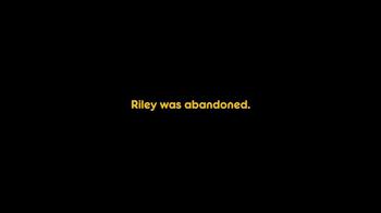 Pedigree TV Spot, 'Riley' - Thumbnail 2
