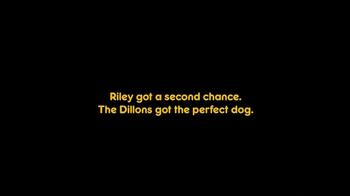 Pedigree TV Spot, 'Riley' - Thumbnail 7