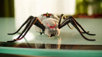 Wild Pets Spider TV Spot, 'Freak Out Your Family'