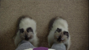 Temptations Cat Treats TV Spot, 'Cat Boots' - Thumbnail 4