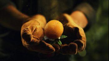Florida's Natural Growers TV Spot For Florida's Natural Orange Juice - Thumbnail 6