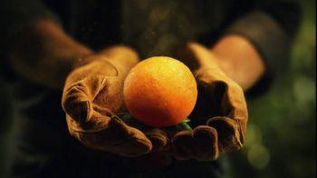 Florida's Natural Growers TV Spot For Florida's Natural Orange Juice - Thumbnail 7