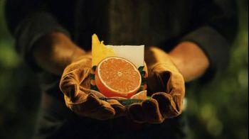 Florida's Natural Growers TV Spot For Florida's Natural Orange Juice - Thumbnail 9