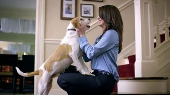 Purina Beneful Baked Delights Hugs TV Spot