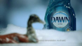 Dawn TV Commercial, 'Saving Wildlife ' - iSpot.tv