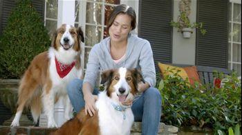 Sergeant?s Pronyl OTC Max TV Spot, 'Pet Protection For Less'