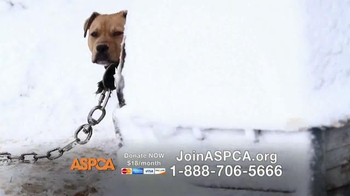 ASPCA TV Spot, 'This Winter' Featuring Allison Cardona - Thumbnail 10