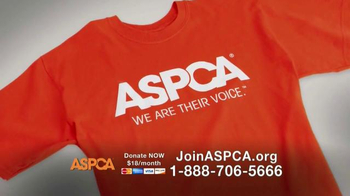 ASPCA TV Spot, 'This Winter' Featuring Allison Cardona - Thumbnail 9