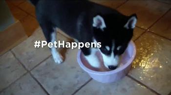 Pet Happens: Husky thumbnail
