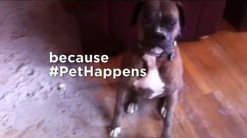 Pet Happens: Boxer thumbnail