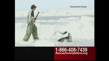 Humane Society TV Spot, 'Rescue Animals Now' Featuring Wendie Malick - Thumbnail 4