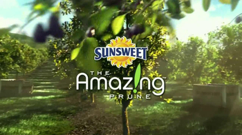 Sunsweet Plum Amazins TV Spot, 'Great on Anything' - Thumbnail 1