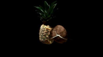 Bacardi Pineapple Fusion TV Spot, Song by Tinie Tempah and Labrinth