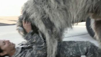 Iams Shakeables TV Spot, 'Rocky & a Soldier' - Thumbnail 6