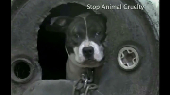 Humane Society TV Spot, 'We're There' Song by Jennifer Hudson