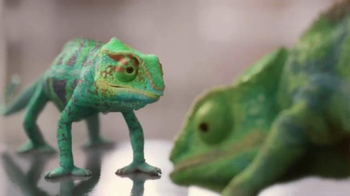 ACE Hardware TV Spot, 'Valspar: Meet the Chameleons' - Thumbnail 6
