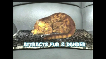 Kitty Cushion TV Spot - Thumbnail 3