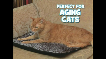 Kitty Cushion TV Spot - Thumbnail 7