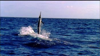 The Florida Keys & Key West TV Spot, 'Explicit Content' - Thumbnail 2