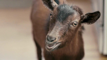 Doritos 2013 Super Bowl TV Spot, 'Screaming Goat'