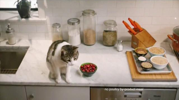 Rachael Ray Nutrish TV Spot, 'If Pets Could Make Their Food' Ft Rachael Ray - Thumbnail 4