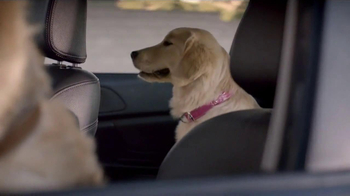 Subaru TV Spot, 'Dog Tested' - Thumbnail 3