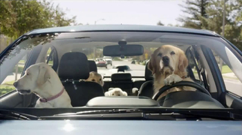 Subaru TV Spot, \'Dog Tested: In the Dog House\'