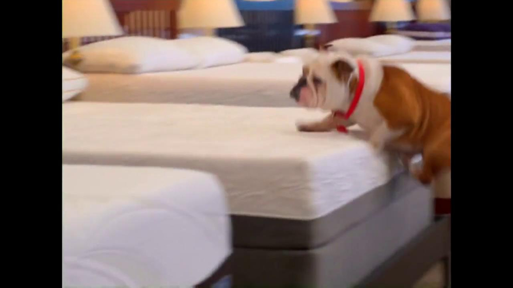 Mattress Discounters TV Spot iSpot