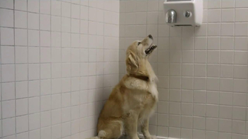 Subaru TV Spot, 'Dog Tested: Gas Station' - Thumbnail 8