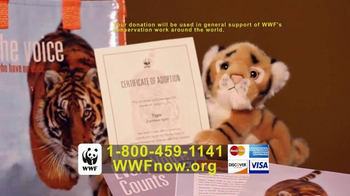 Tiger Adoption thumbnail