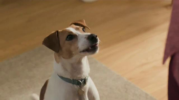 Purina Beneful Chopped Blends TV Spot, 'Yes, I Want to Eat!'