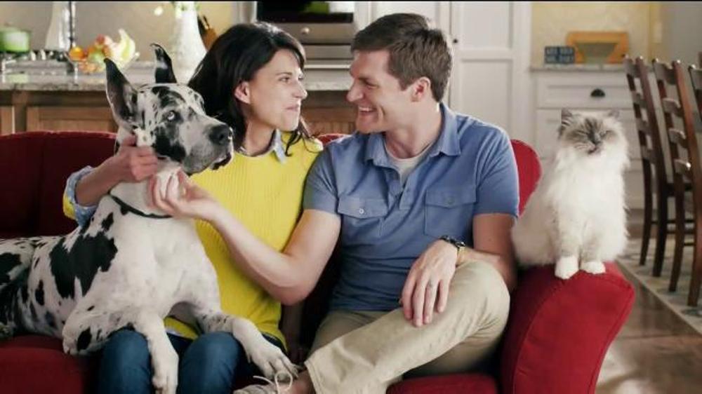 Petarmor Plus Tv Commercial Shaming Signs Ispot Tv