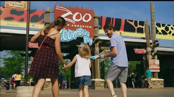 Safelite Auto Glass TV Spot, 'Zoo Mobile Service'