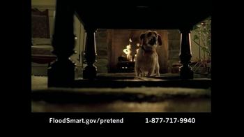 National Flood Insurance Program TV Spot - Thumbnail 4