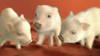 The Home Depot Carpet TV Spot, 'Little Piggies'