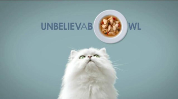 Fancy Feast Broths TV Spot, 'Get Ready'