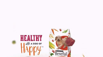 Purina Beneful Original TV Spot, 'Dinner for Two' - Thumbnail 9