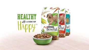 Purina Beneful Healthy Weight TV Spot, 'The Wrestler' - Thumbnail 7