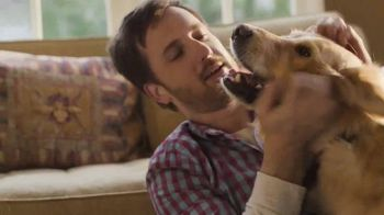 Purina Beneful Healthy Weight TV Spot, 'The Wrestler' - Thumbnail 6