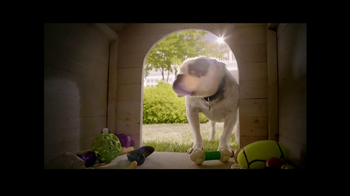 PetSmart TV Spot, 'Dog Types' - Thumbnail 5