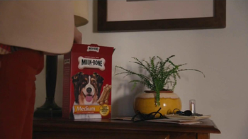 Milk-Bone TV Spot, Song by The Hunts - Thumbnail 8