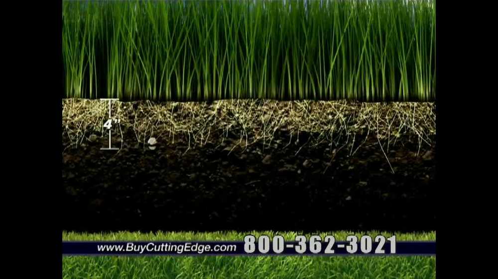 Cutting Edge Grass Seed Tv Spot Ispot Tv