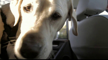 Subaru Forester TV Spot, 'Grew Up in the Backseat' - Thumbnail 3