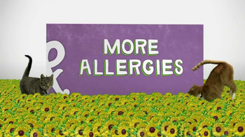 Corner of Allergies and More Allergies thumbnail