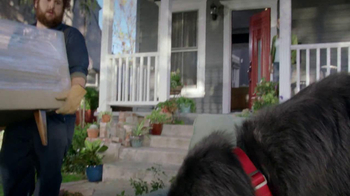 Bank of America BankAmericard TV Spot, 'Benny the Dog' - Thumbnail 3
