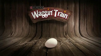 Purina Waggin' Train TV Spot - 2298 commercial airings