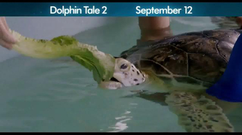 Dolphin Tale 2 - Alternate Trailer 3