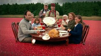Thanksgiving Turkey Dinner thumbnail