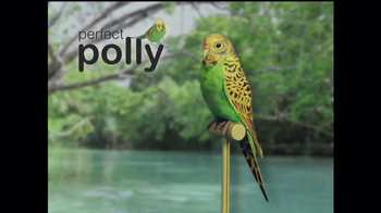 Perfect Polly TV Spot
